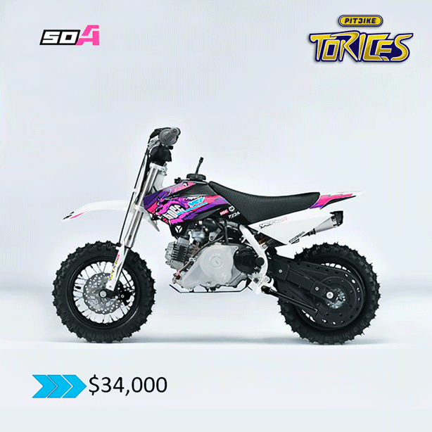 PITBIKE-MODELO-50-A-PITBIKE-TORICES-2