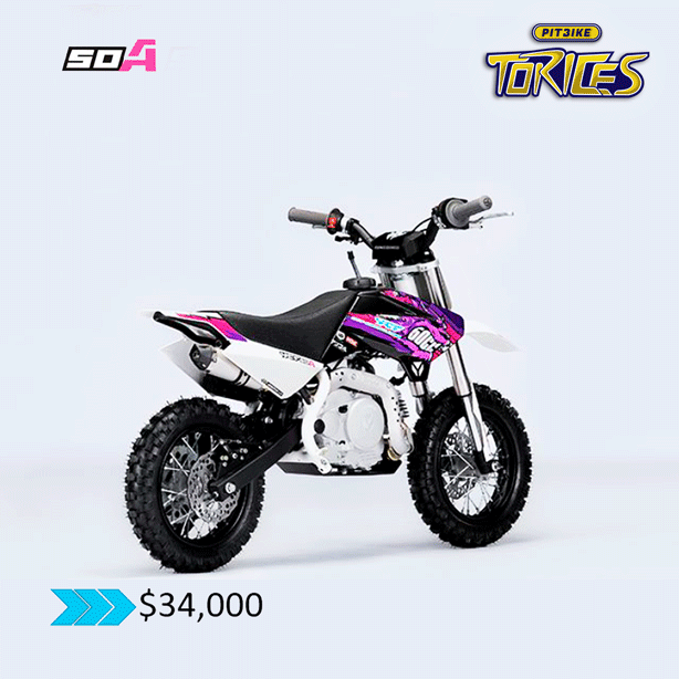 PITBIKE-MODELO-50-A-PITBIKE-TORICES-3