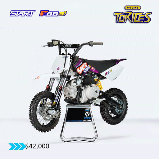 START-F-88-PITBIKE-TORICES-1