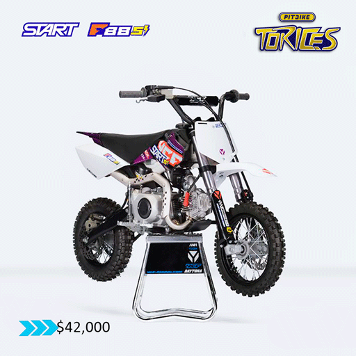 START-F-88-PITBIKE-TORICES-4